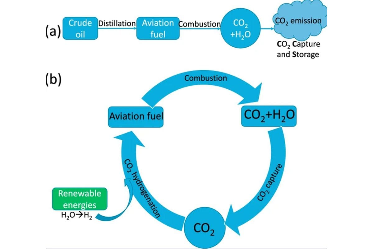 co2 diagram nature nature