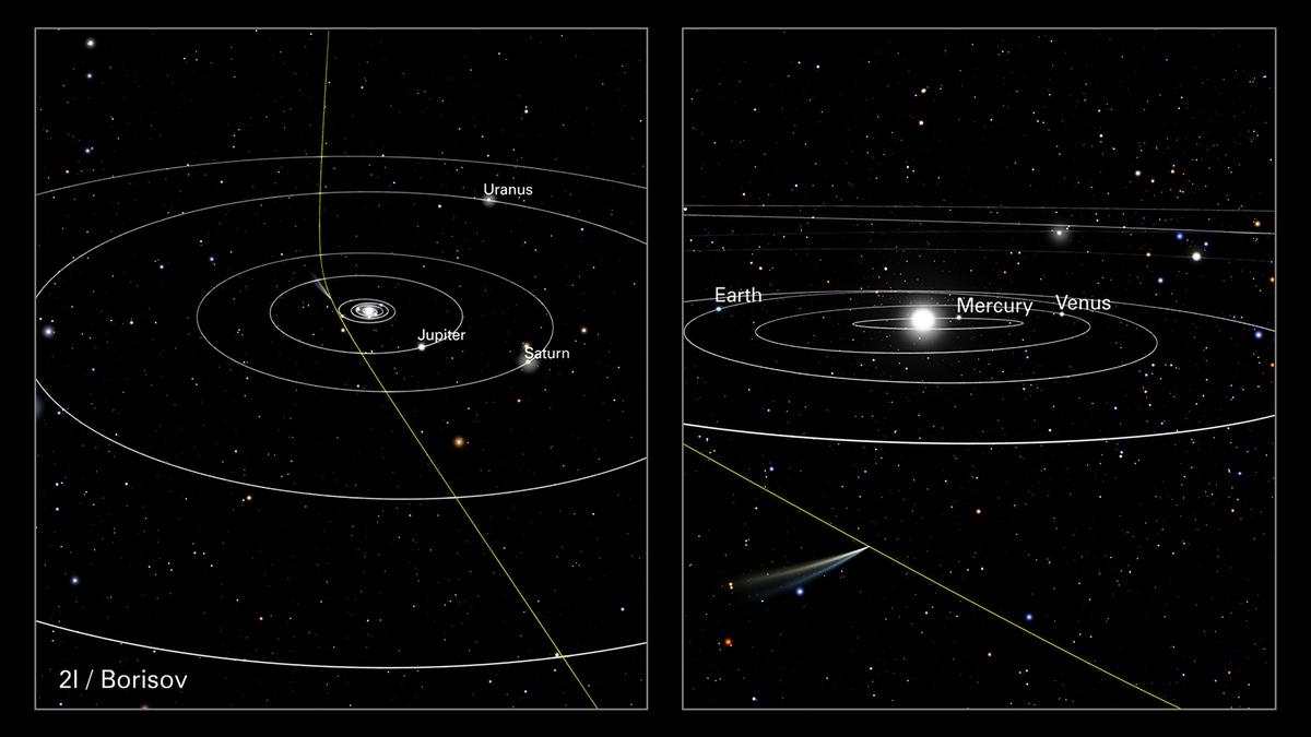comet wp full comet