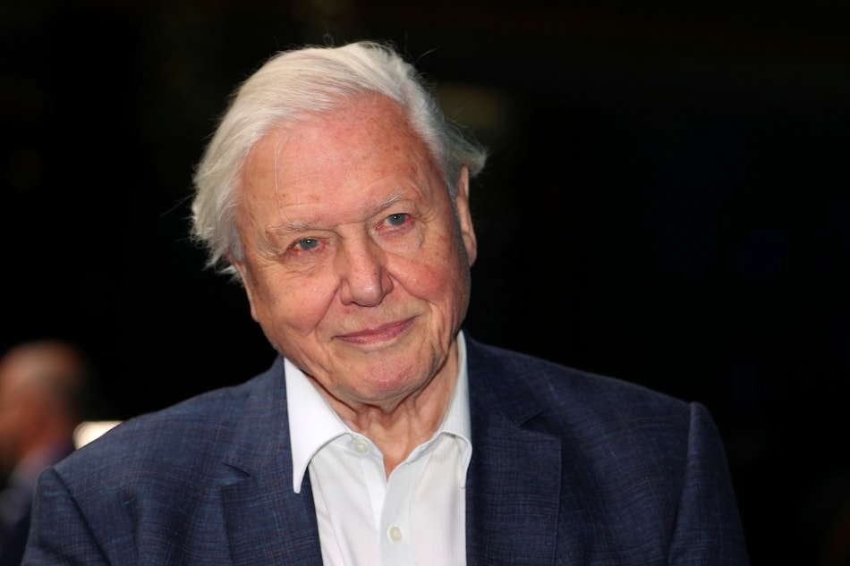 David Attenborough Sets Record for Fastest to 1 Million Instagram Followers, Hits Milestone in Under 5 Hours