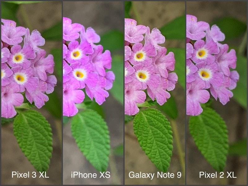 daylight macro pixel 2 100 CROP camera