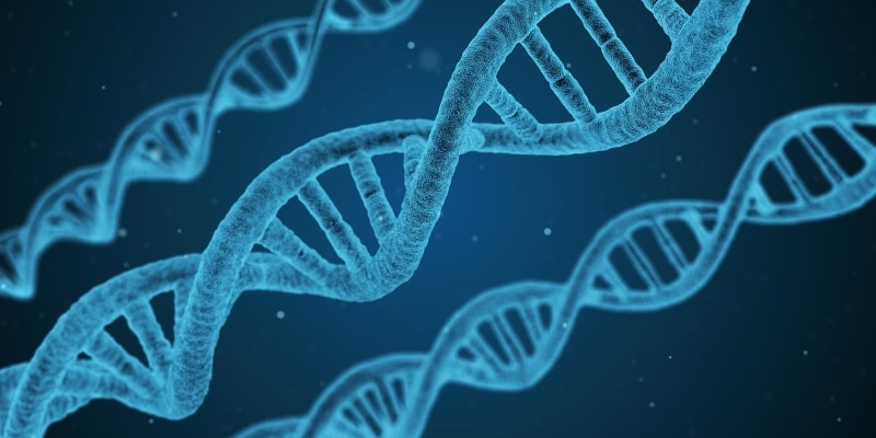 DNA May Just Become the Next Storage Medium, Heralds New Breakthrough