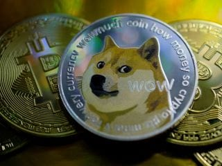 Has Dogecoin, Elon Musk's 'People's Crypto', Fizzled Out After Record Rally?