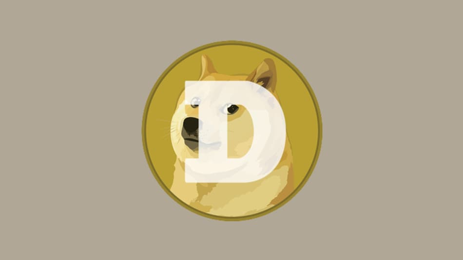 Dogecoin Records Biggest Jump in a Day, Soars Over 100 Percent After Elon Musk's Tweet