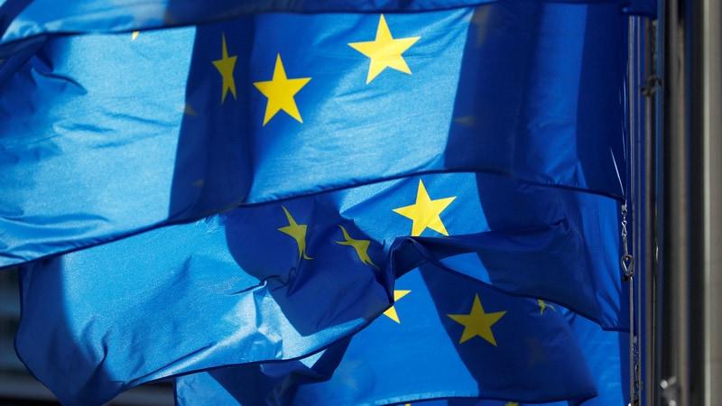 EU States Divided Over Digital Tax, Fear US Retaliation