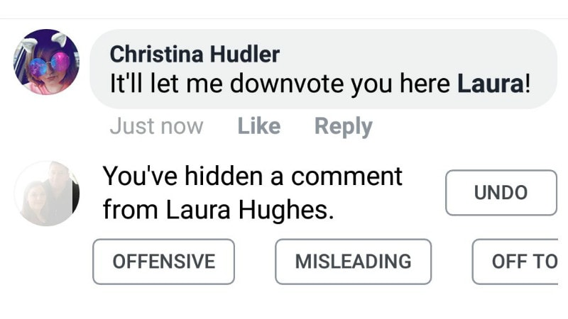 facebook downvote button christina hudler twitter Facebook Downvote button
