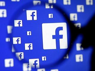 Wildlife Traffickers Use Facebook, Instagram to Find Black-Market Buyers