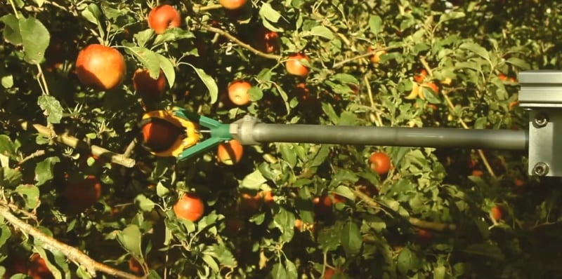 Robotic Fruit Pickers May Help US Orchards With Worker Shortage