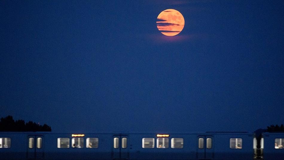 वट पूर्णिमा (Vat Purnima), हनीमून, पॉसन पोया ... 24 जून के पूनम के इस चांद के कितने नाम!
