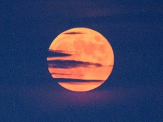 Vat Purnima, Honey, Strawberry, Rose: Here's How the Upcoming June Full Moon Is Known Across the World