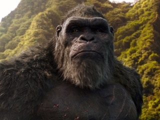 Godzilla vs. Kong India Release Date Brought Forward to March 24
