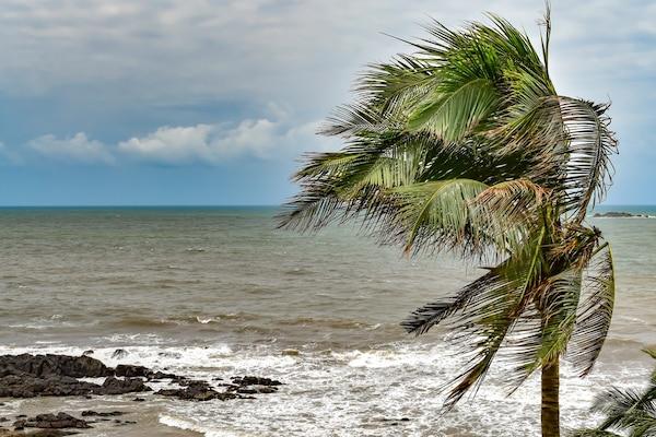 Mumbai Gears Up to Brace Its First Ever Cyclone Nisarga