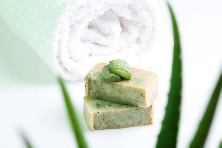 Aloe Vera Soap Recipe