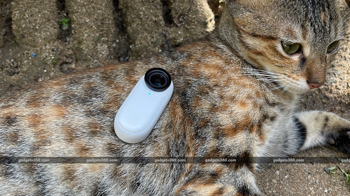 insta360 go2 review style cat mm