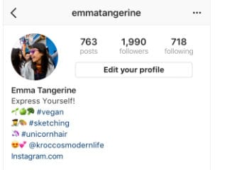 Instagram Users Can Now Add Hashtag, Profile Links in Bios
