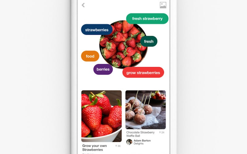 Pinterest Lens Unveiled, Lets You Identify Objects to Buy Them