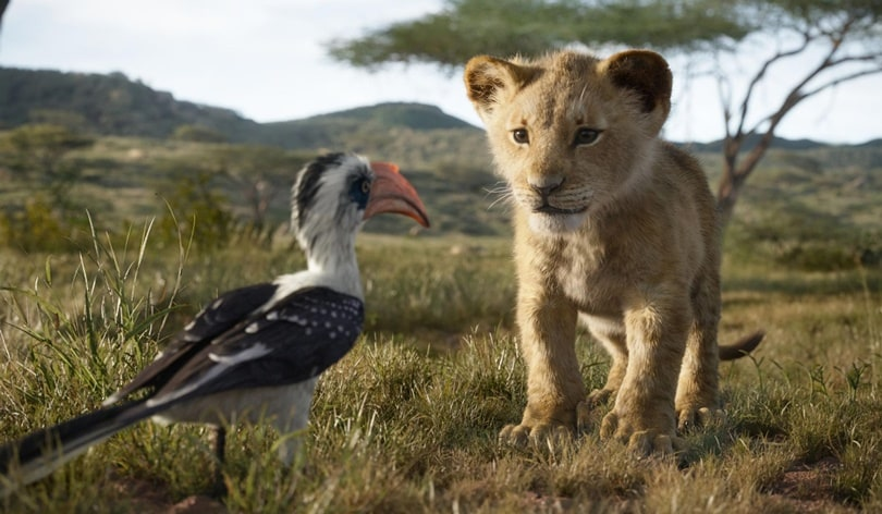 lion king 2019 zazu simba Lion King 2019 movie Zazu Simba