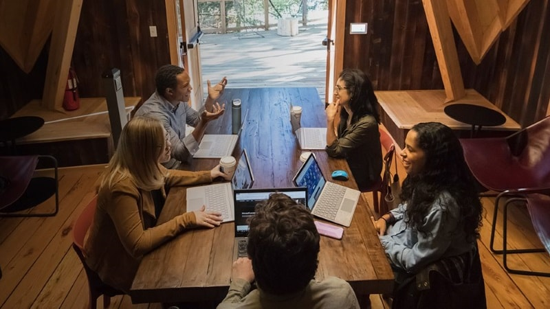 Microsoft Builds Treehouse Offices in Bid to Foster Creativity and Focus