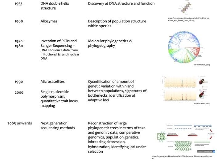 molecular ecology timeline jahnavi Molecular Biology