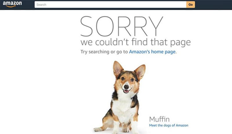 Amazon Product Page Error Leads Some Users to Dog Photos