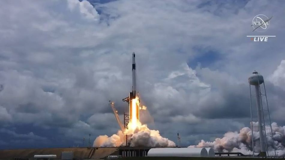 SpaceX Launches Tiny Sea Creatures, Experimental Toothpaste, Solar Panels to ISS