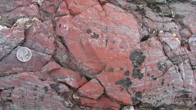 Fossils Point to Life on Earth 4 Billion Years Ago