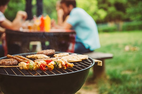 Best Portable Barbeque Grills, Enjoy Camping with Micro BBQ Grills