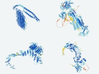 DeepMind AI Says Will Release Structure of Every Protein Known to Assist Researchers Better