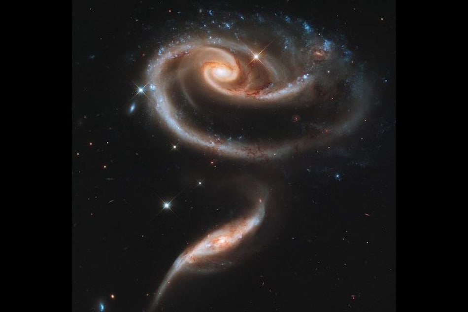 NASA Shares an Image of a 'Cosmic Rose'. Here's What It Is