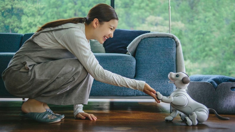 Sony Is Relaunching Its Aibo Robot Dog - And, It Hopes, Its Brand