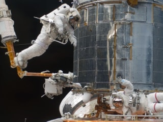 Space Travel May Alter Gene Expression, NASA Study Finds