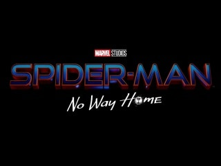 Spider-Man: No Way Home Is the Official Spider-Man 3 Title