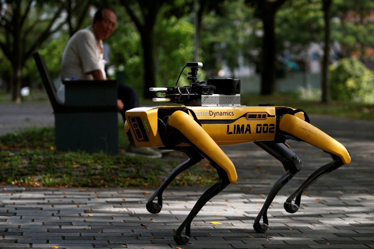 Coronavirus: Robot Dog on Park Patrol in Singapore