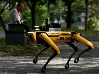 Coronavirus: Robot Dog on Park Patrol in Singapore