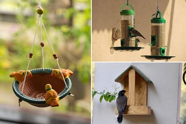Bird Feeders: Stylish Feeding Stations For Your Winged Friends