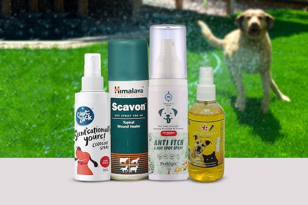 Best Anti-Bacterial Sprays for Pets