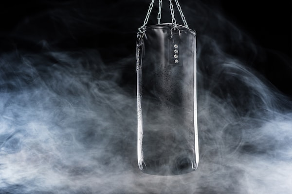 Best Punching Bags For Combaters