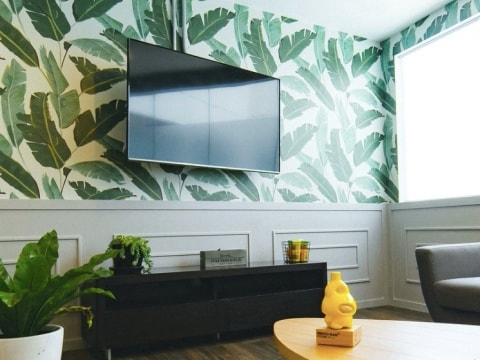 Wall Mount or on a Stand? What You Need to Know Before Setting Up Your New TV