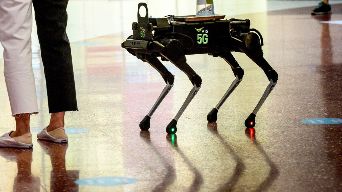 Robot Dog Hounds Thai Shoppers to Keep Hands Coronavirus-Free