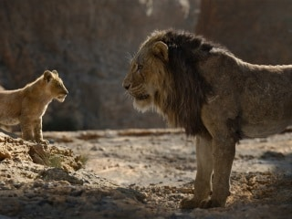 The Lion King Tops The Avengers to Become 7th Biggest Movie of All Time, With $1.564 Billion at Worldwide Box Office