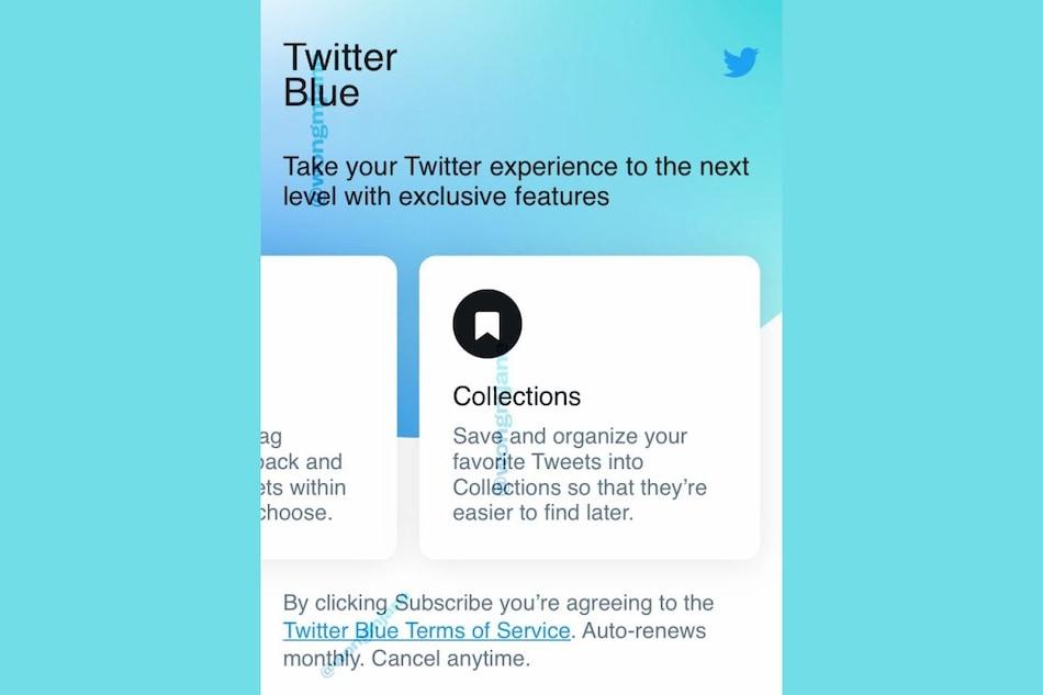 Twitter Blue: ट्विटर के पेड सब्सक्रिप्शन की कीमत हुई लीक, 'Undo Tweet' जैसे कई फीचर्स से होगा लैस