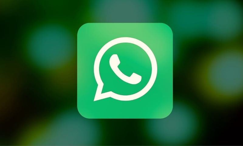 WhatsApp for iPhone Now Lets You Download All the Data It Has on You