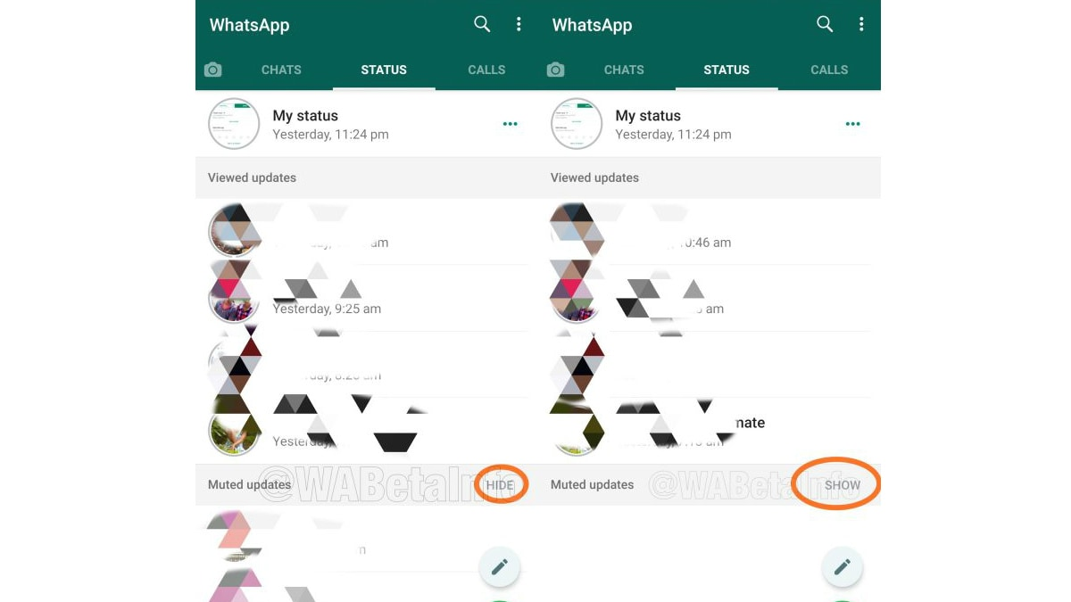 Whatsapp Working On Hide Muted Status Updates Feature