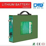 Demuda 18650 Pure Sine Wave Inverter (Green)