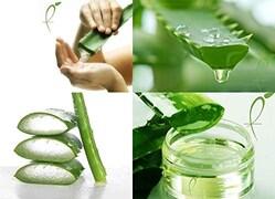 Fitness Mantra Aloe Vera Juice (Aloe Vera, 500ML)