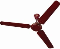 Surya Baltic Air Ceiling Fan (Brown)
