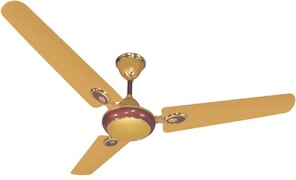Black Cat BC-55 Ceiling Fan (Gold)