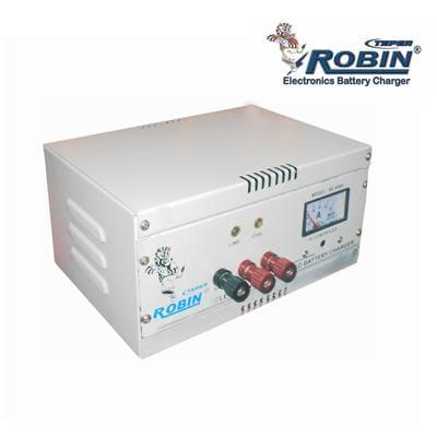 Robin Teper BT-6000 C Voltage Stabilizer (Grey)