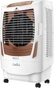Havells Celia I Air Cooler (Brown & White, 55 L)