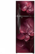 LG 260 L Frost Free Double Door 4 Star Refrigerator (GL T292RSDX)