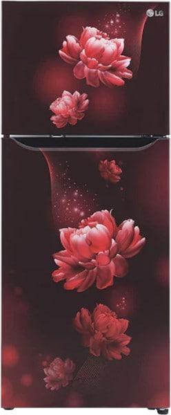 LG 260 L Frost Free Double Door 3 Star Refrigerator (GL T292SSC3)